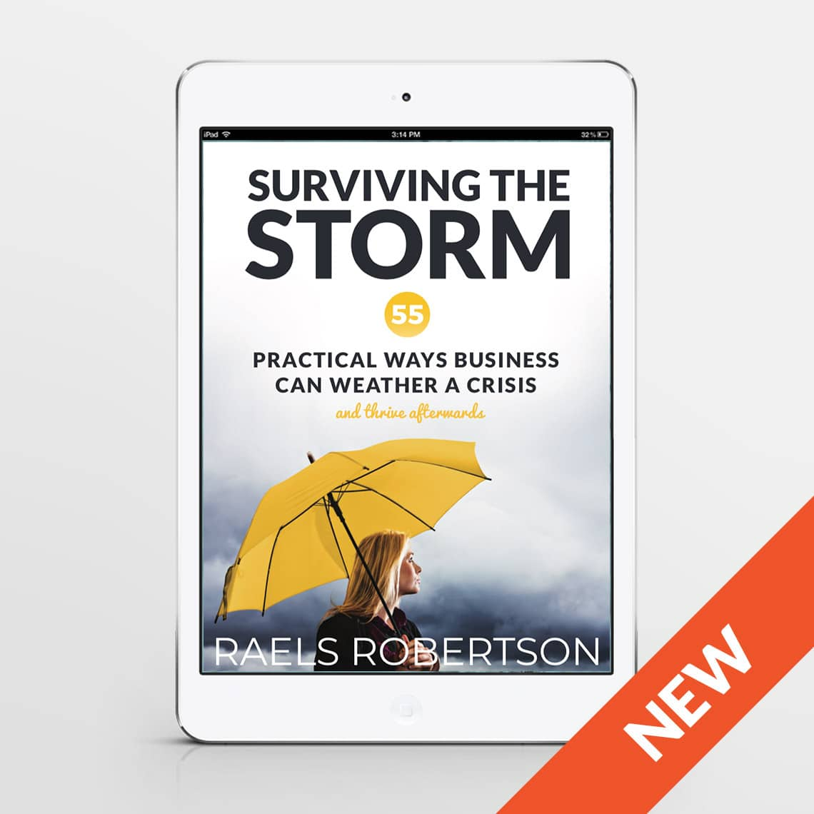 Surviving the Storm – 55 Practical Ways Business Can Weather A Crisis and Thrive Afterwards